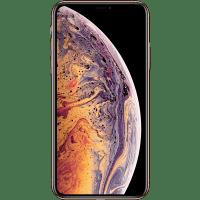 iPhone Repair 1